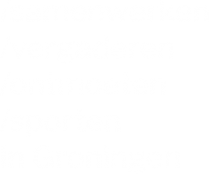 DE STEK Groningen pay-off
